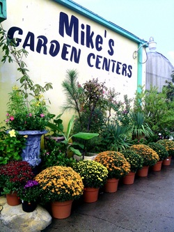 locations mike 39 s garden centers fort worth southlake